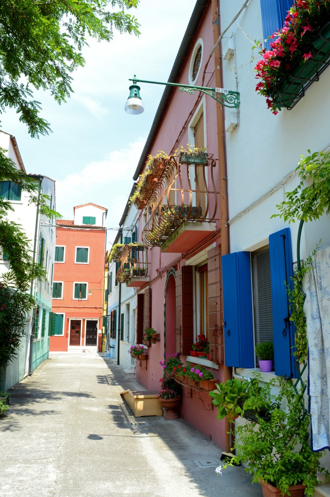 burano village couleurs rue plante