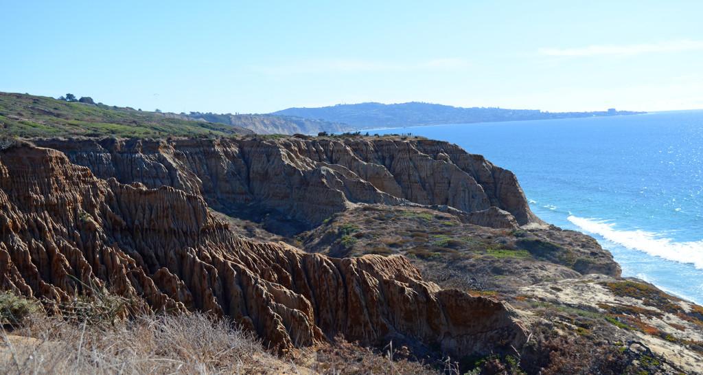 Falaises de Torrey Pines avec l'océan