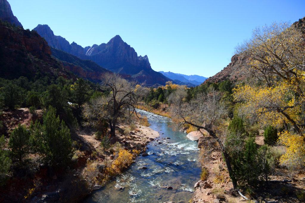 vue sur riviere et le parc