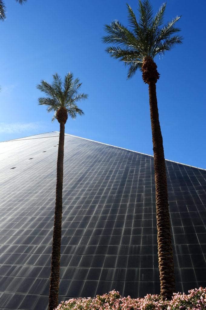 pyramide du luxor avec palmiers