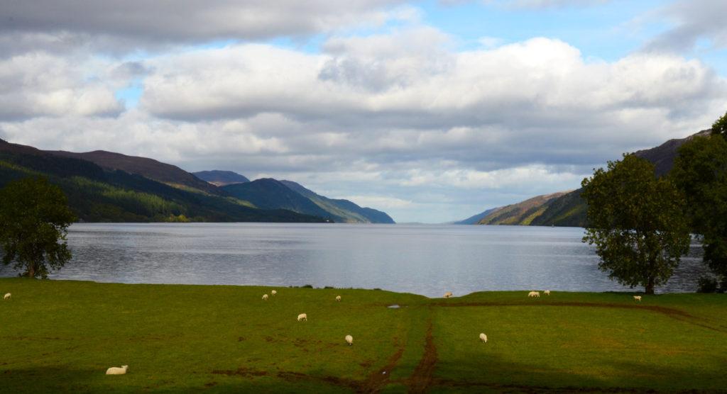 Vue sur le Loch Ness avec des moutons