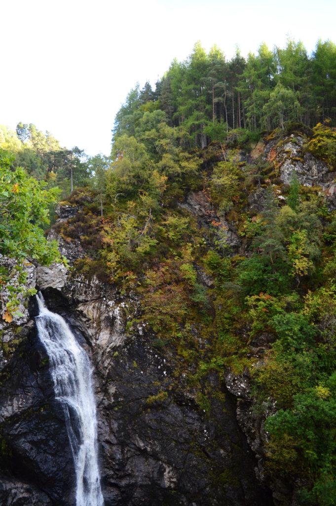 grande cascade dans la forêt