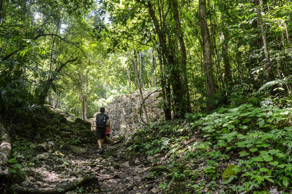 arrivée aux ruines de yaxchilan, dans la jungle, chiapas, mexique