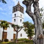 petite église de icod de los vinos et arbres